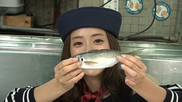 浦安魚市場では魚の目利きに挑戦