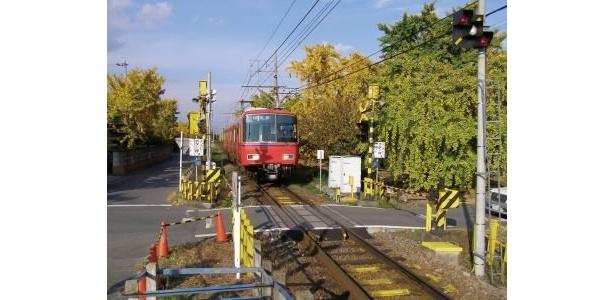 名鉄尾西線山崎駅の周辺も色鮮やかな並木が続く