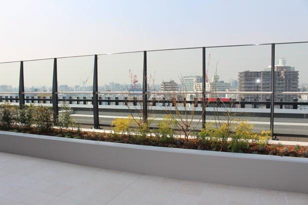 渋谷の街を見渡せる、開放的なテラスも自慢