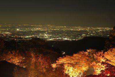 絶景!遠くに見える湘南の街の光にうっとり…