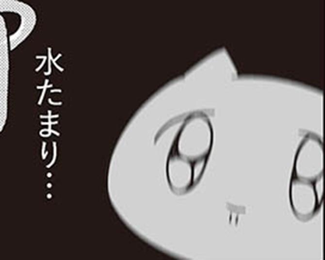 【漫画】今日の夕飯は鶏団子鍋!スーパーで材料を買って帰ったけれど…/人生は深いな