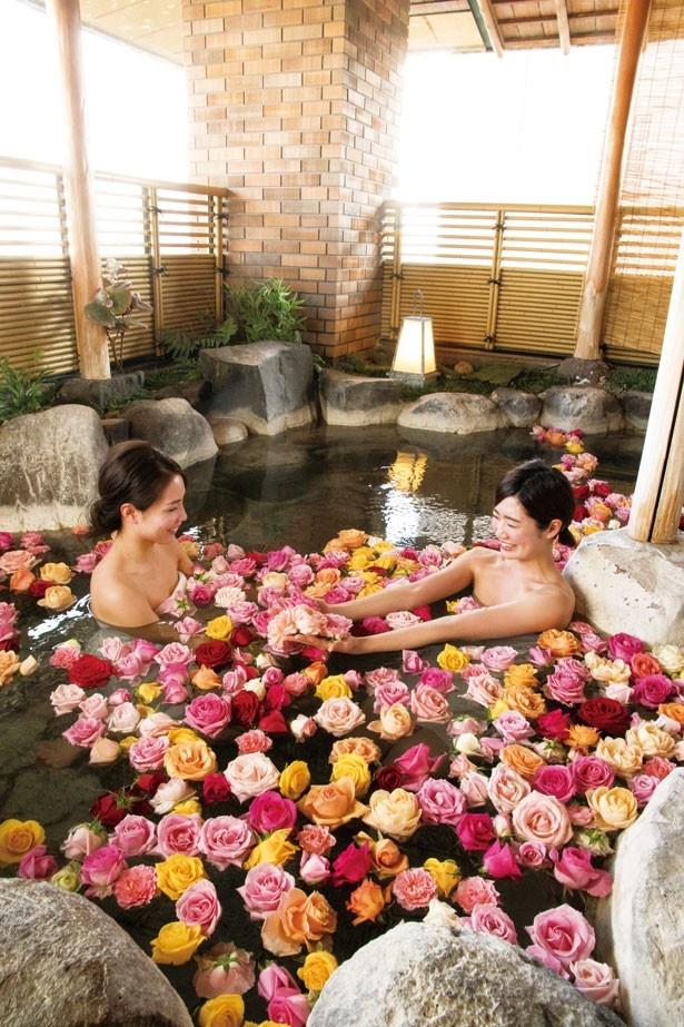 「ホテル若水」では約400輪のバラの花が浮かぶ露店風呂を楽しめる※女性のみ、月土の16時~24時限定で利用可能