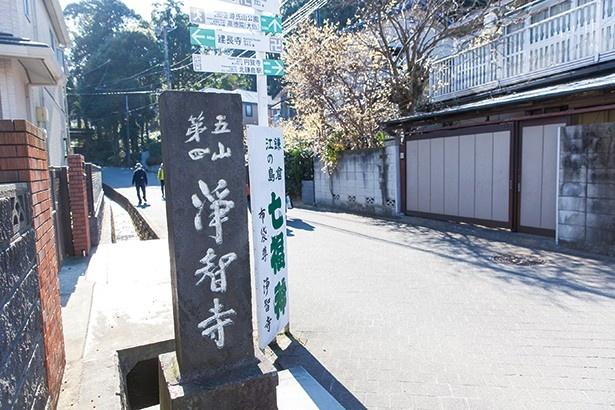 【写真を見る】浄智寺の脇道の坂を登るとハイキングコースがスタート!
