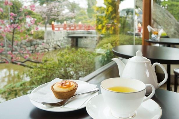 【写真を見る】カフェ「風の杜」では「鎌倉チーズタルト」などのオリジナルスイーツや紅茶が人気(鶴岡八幡宮)