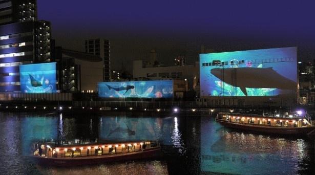 【写真を見る】天王洲運河水辺広場ではプロジェクションマッピングが
