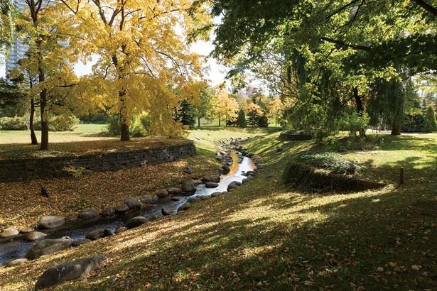 中島公園内を流れる鴨々川。川沿いには散策路も整備されていて……