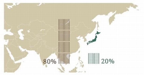 【画像を見る】今や海外産が主流に!? 貴重な国内産のいぐさを使ったお箸です
