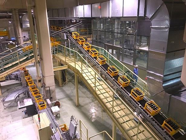 横浜工場の「一番搾り うまさの秘密体感ツアー」(無料・要予約)では製造ラインも見学できる