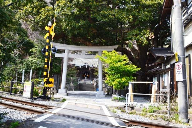 鳥居の目の前に踏切があるという全国的にも珍しい風景が見られる「御霊神社」