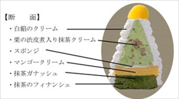 【写真を見る】モンブラン全体に抹茶たっぷり使用!!