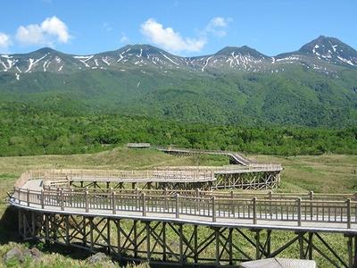 知床五湖/一湖まで整備されている高さ2m、全長800mの木道。片道徒歩20分。