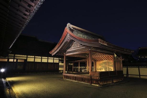 美しい夜の国宝!西本願寺のライトアップが話題