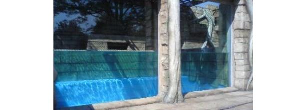 幅4m、奥ゆき3.5mのプール