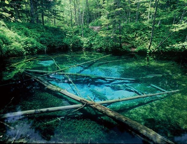 美しく神秘的なブルーに輝く池水