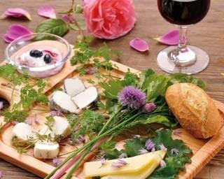 4万株のチューリップがつくるパレット花壇。 紫竹ガーデンで大人気の朝食ビュッフェとは…