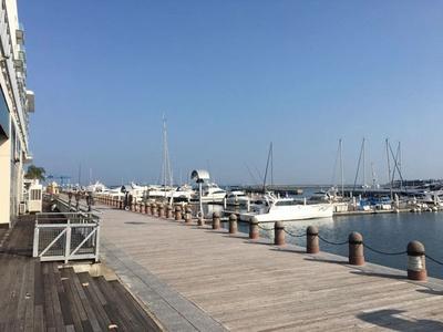 海沿いの特設会場は、潮風が気持ちよく、地中海のような気分を味わえる