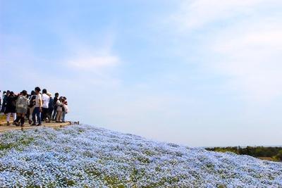 空と海の青と溶け合う風景は、まさに絶景!