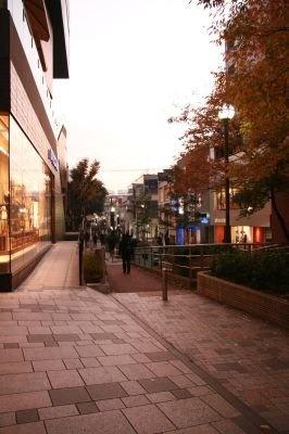 キャットストリートの風景