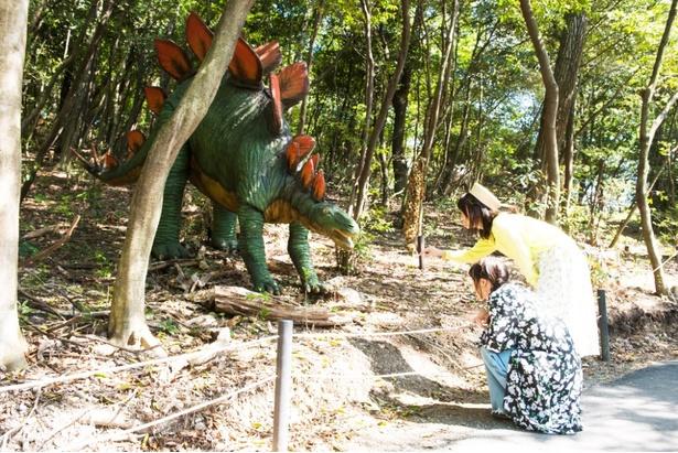 「この子はステゴサウルスだよ」(鎌田)「面長なお顔だね」(熊崎)