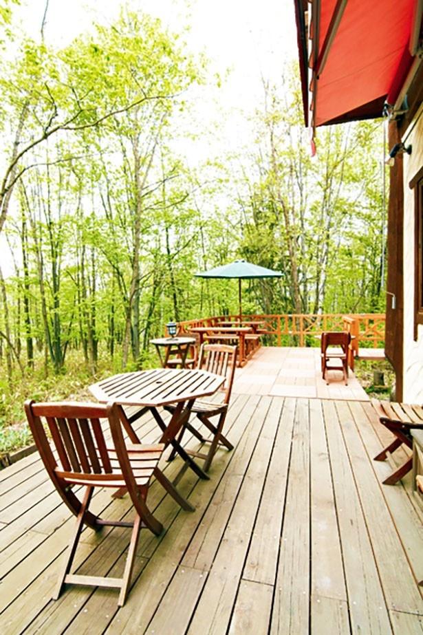緑に囲まれる自然豊かなテラス席はペットも同伴可能