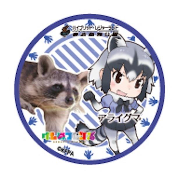 アニマルガールとリアルアニマルの缶バッジ新デザイン登場!