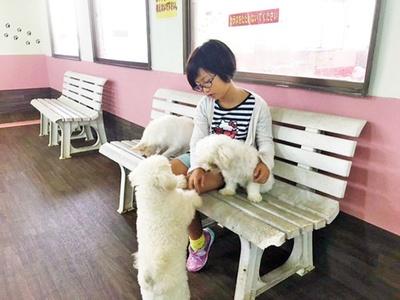 【写真を見る】犬・猫好きにはたまらない/ワールド牧場