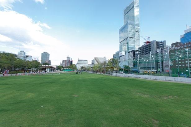 天王寺駅からすぐの街なか公園広大な芝生の上で遊ぼう