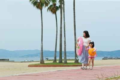 【写真を見る】大きなヤシの木で南国気分も満喫できる/須磨海水浴場