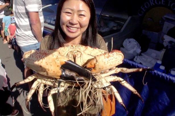 タスマニアには巨大蟹が!