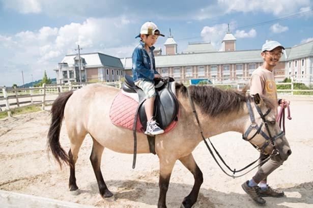 「ホースランド」では、引き馬(500円)や、馬との出会い体験(2000円)が楽しめる ※共に要予約/道の駅 神戸フルーツ・フラワーパーク大沢 FARM CIRCUS