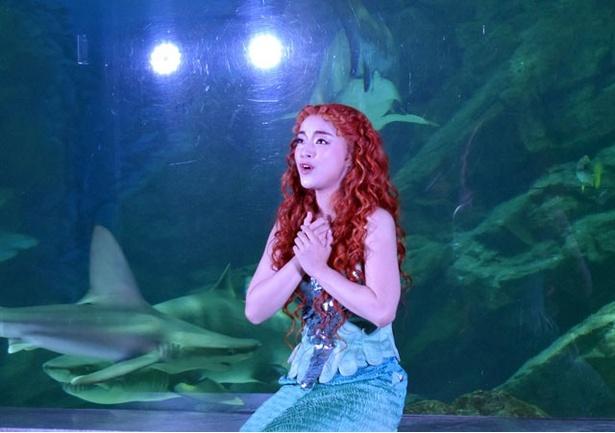 アリエル役の谷原志音の強く美しい歌声に、場内は感動に包まれた
