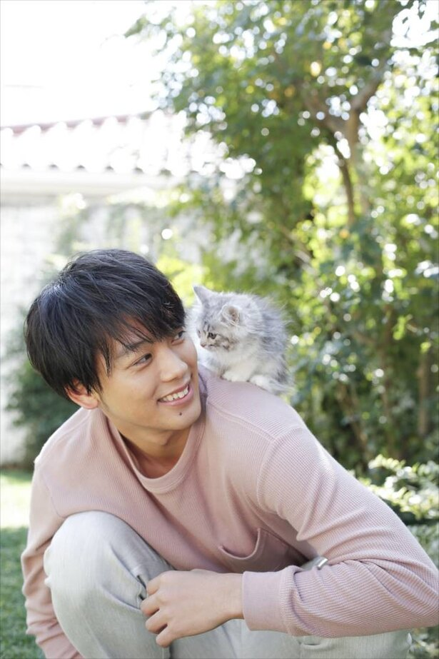 【写真を見る】竹内涼真×ネコの萌えSHOTの数々!
