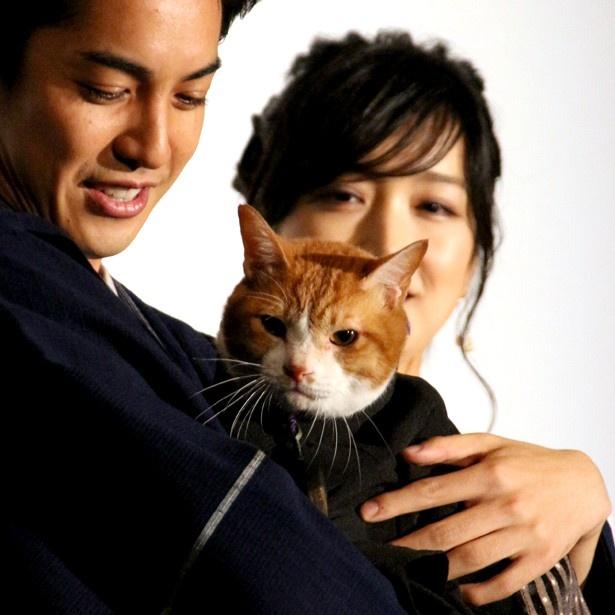 【写真を見る】猫の金時と久しぶりに対面した大野拓朗はメロメロに