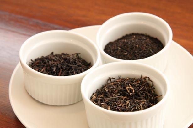 フレーバーに頼らず紅茶のおいしさを追求!「当店ではフレーバーは扱いません。ぜひ13種の紅茶で本当のおいしさを味わってください」/ティールーム マーブル
