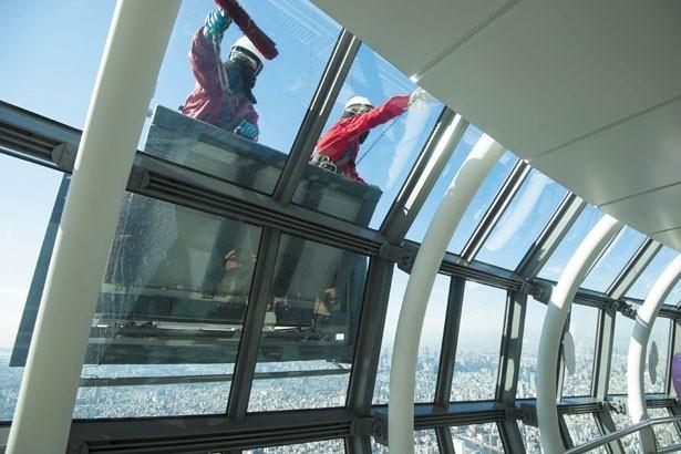 高さ450m! 見られたらラッキーな日本一高いガラス清掃