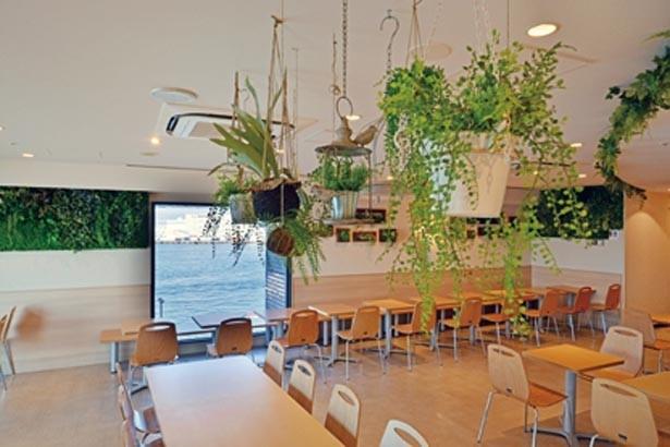大阪湾を望むカフェ「マーメイド」。「SEA SAW」は入館しなくても利用可能/カフェ「マーメイド」(海遊館内)