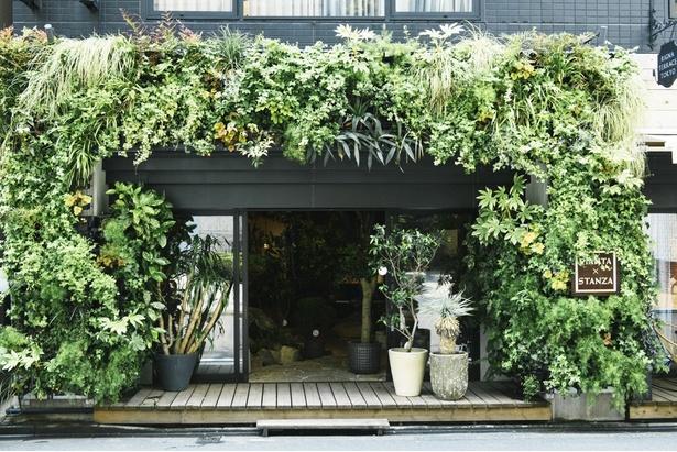 観葉植物や多肉植物を中心に扱うお店がベスト