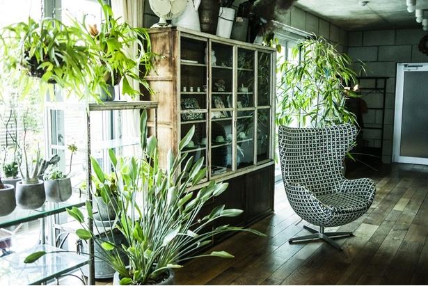 植物が自分の部屋のテイストに馴染むのか、購入する前に想像することが大切