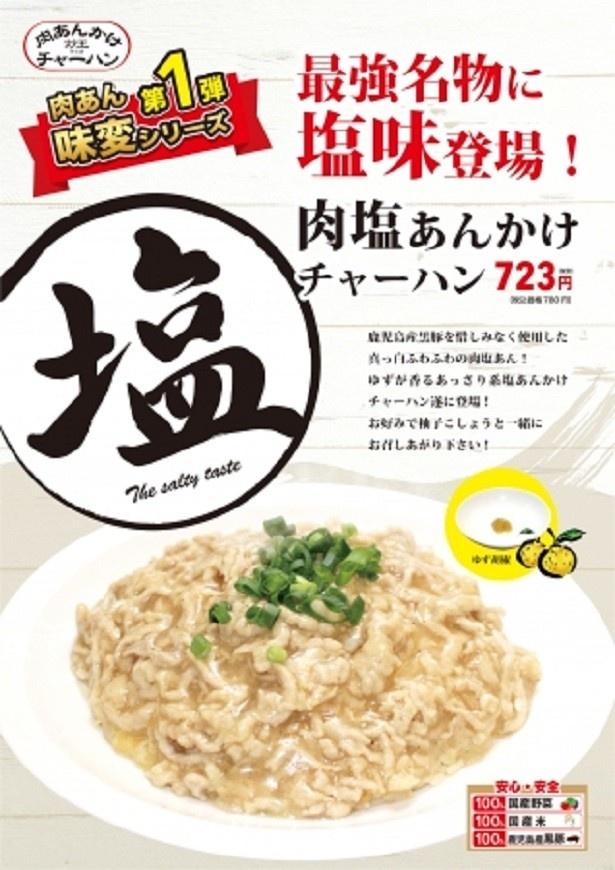 【写真を見る】5月8日(月)から販売されている「肉塩あんかけチャーハン」(税別723円)
