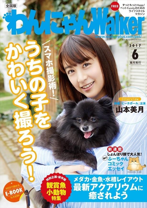 わんにゃんW6月号の表紙は山本美月さんと愛犬のこつめちゃんです