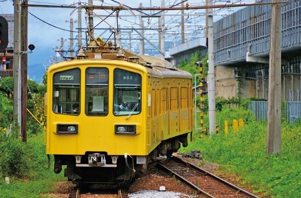 1898年開業で滋賀の私鉄としては最も歴史がある。地酒などのイベント列車も運行/近江鉄道