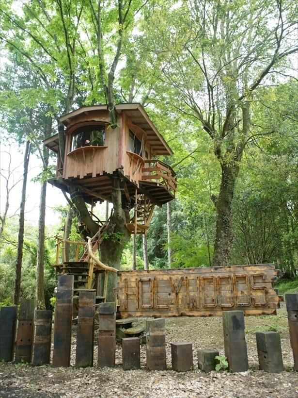 千葉県・久留里にある自然豊かな施設「ホウリーウッズ久留里キャンプ村」