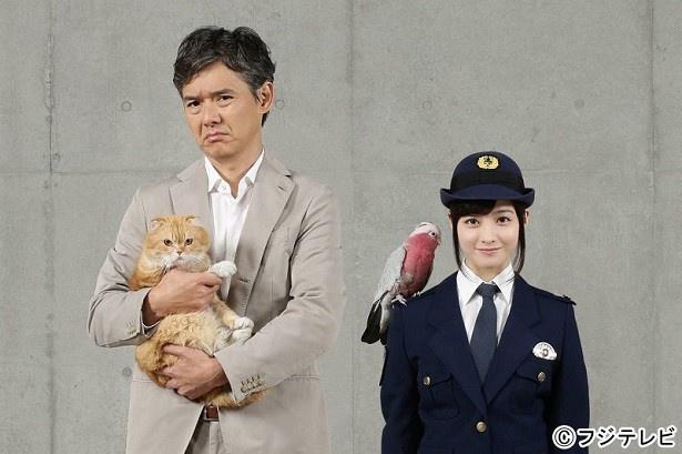 フジの新ドラマ「警視庁いきもの係」で、渡部篤郎と橋本環奈が初共演!