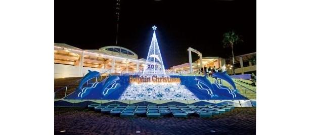 水族館で癒しのクリスマスを過ごそう! 横浜・八景島シーパラダイス「ドルフィンツリー」
