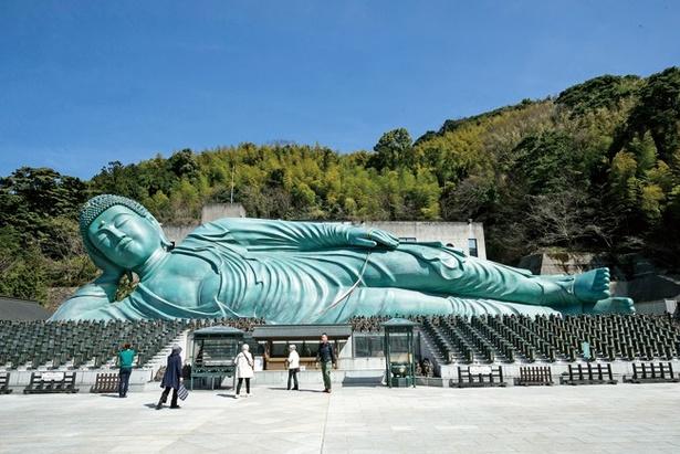 全長41m、高さ11m、重さ300t。思わず息を呑む迫力