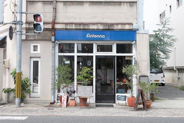 岡山後楽園から徒歩すぐのアットホームなお店。気さくなお母さんが迎えてくれる/Cafe Antenna