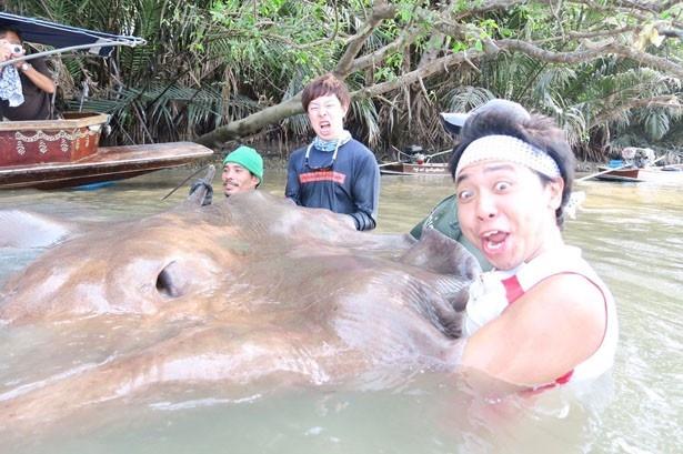 サンシャイン池崎が挑戦する「釣りまアース」