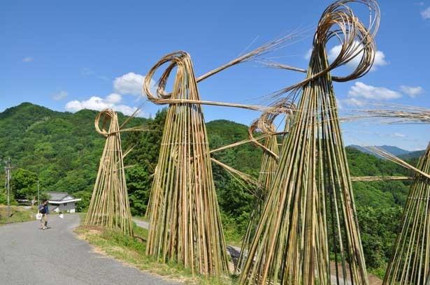 ニコライ・ポリスキー「Bamboo Waves」