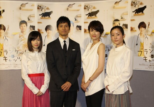 6月23日(金)よりスタートする「ブランケット・キャッツ」会見に登壇した出演者たち