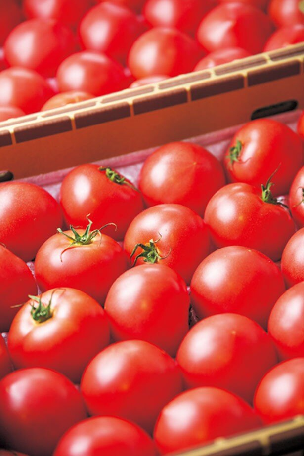 【写真を見る】「丸ごとトマトサラダ」のトマト/キャピタル東洋亭本店